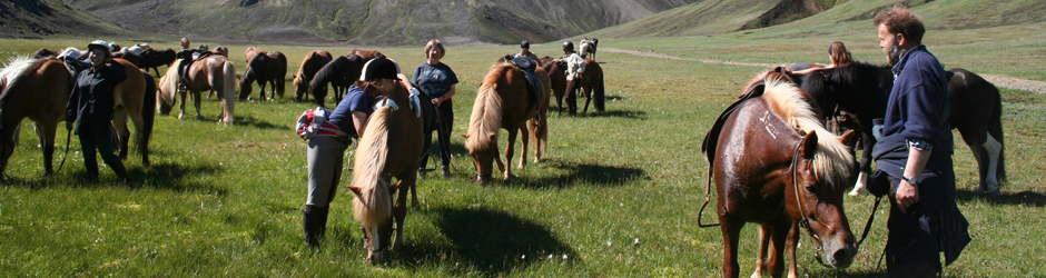 The family of Hekluhestar has been offering riding tours since 1981.